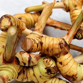 Galangal root (Thai ginger)